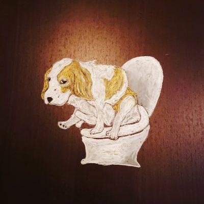 キャバリア ビーグル 犬 おしゃれ
